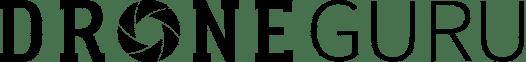 Logo Droneguru Blanco y Negro